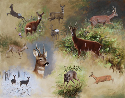 Rodger McPhail wildlife commissions